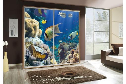 Szafa Penelopa Akwarium 2 205 cm - 4 kolory